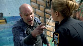 Blue Bloods: Season 4: Exiles